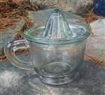 Glass Juicer and Measuring Cup by Park Hill Collection
