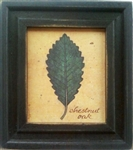 Chestnut Oak Framed Print by Bonnie Wolfe