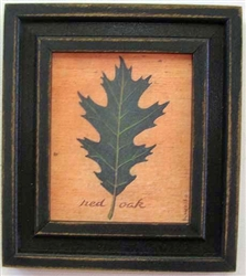 Red Oak Leaf Framed Print by Bonnie Wolfe