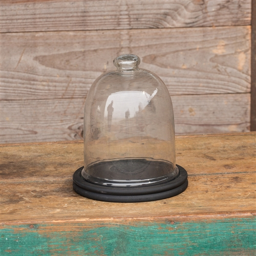 Large Gl Cloche With Black Wood Base 10
