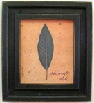 Shingle Oak Leaf Framed Print by Bonnie Wolfe