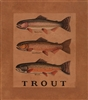 Three Trout Framed Print by Bonnie Wolfe